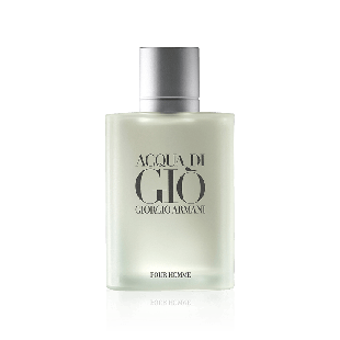 Acqua Di Gio (100ml)